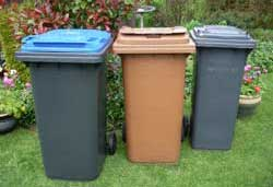 Recycling and rubbish - bins and bags